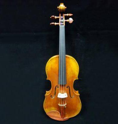 Helmut Illner Violin Image