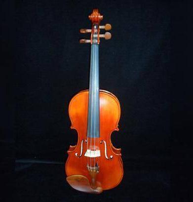 Stradivari Strings Violin Image