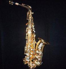 Beginner Level Saxophone