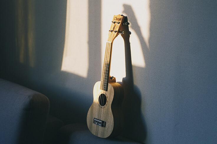 Buy ukulele