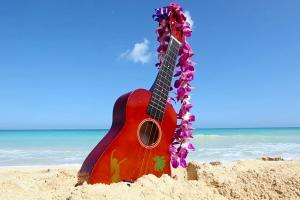 Affordable ukulele lessons
