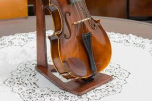 Tips on violin lessons for the beginners