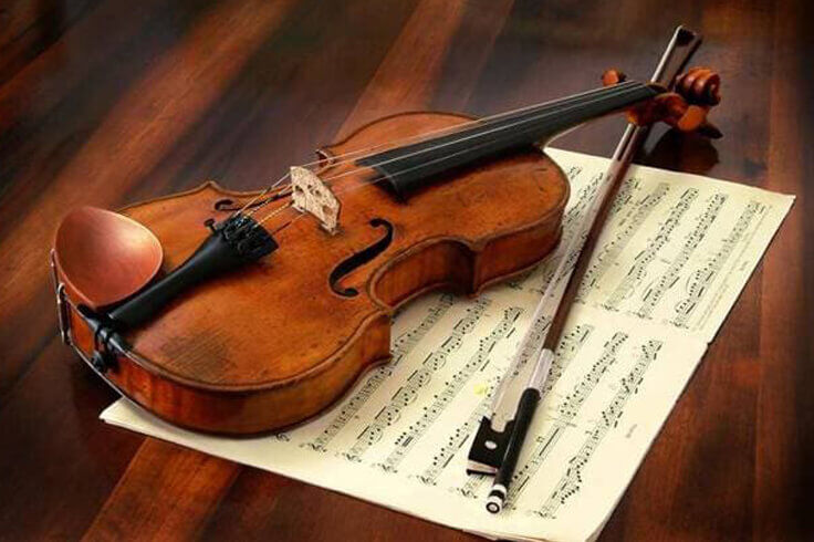 6 Steps for The Beginners Violin Lessons
