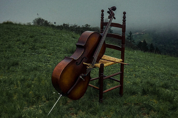 Do's and Don'ts That You Should Know While Taking Cello Lessons