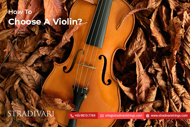 Violin Lessons For Beginners – How To Choose A Violin?