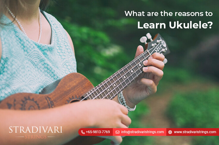 What are the reasons to learn ukulele?