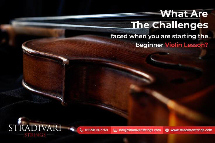 What are the challenges faced when you are starting the beginner violin lesson?