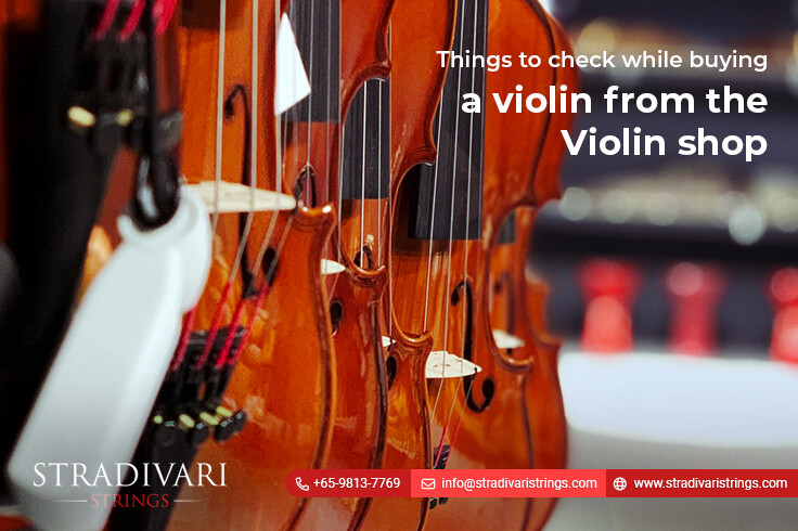 Things to check while buying a violin from the violin shop Singapore