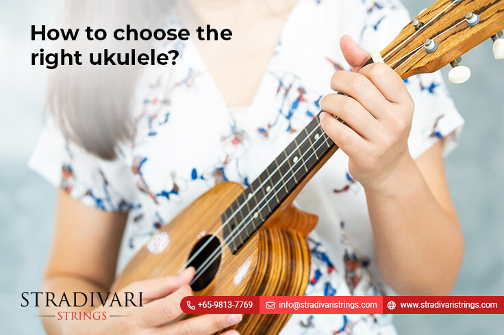 How to choose the right ukulele?