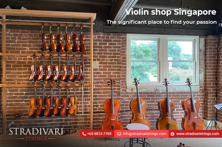 Violin shop Singapore-The significant place to find your passion