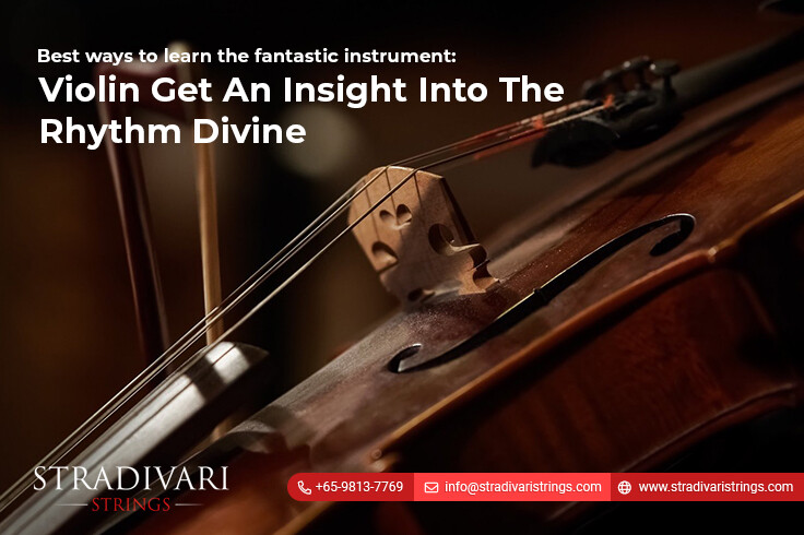 Best ways to learn the fantastic instrument: Violin