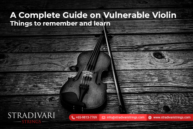 A complete guide on vulnerable violin-Things to remember and learn