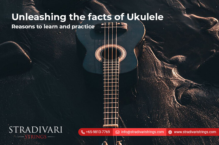 Unleashing the facts of Ukulele-Reasons to learn and practice