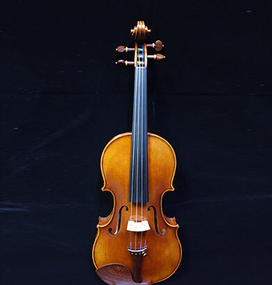 Stradivari Strings Violin Model 5 Image