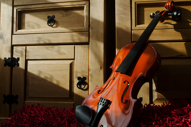 beginner violin lessons for adults