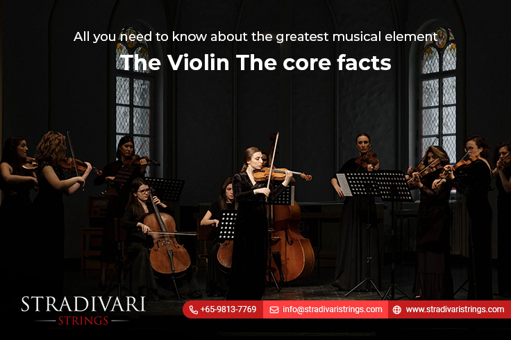All you need to know about the greatest musical element-The Violin-The core facts