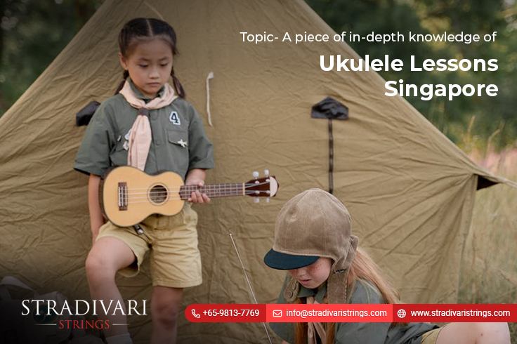 A piece of in-depth knowledge of ukulele lessons Singapore